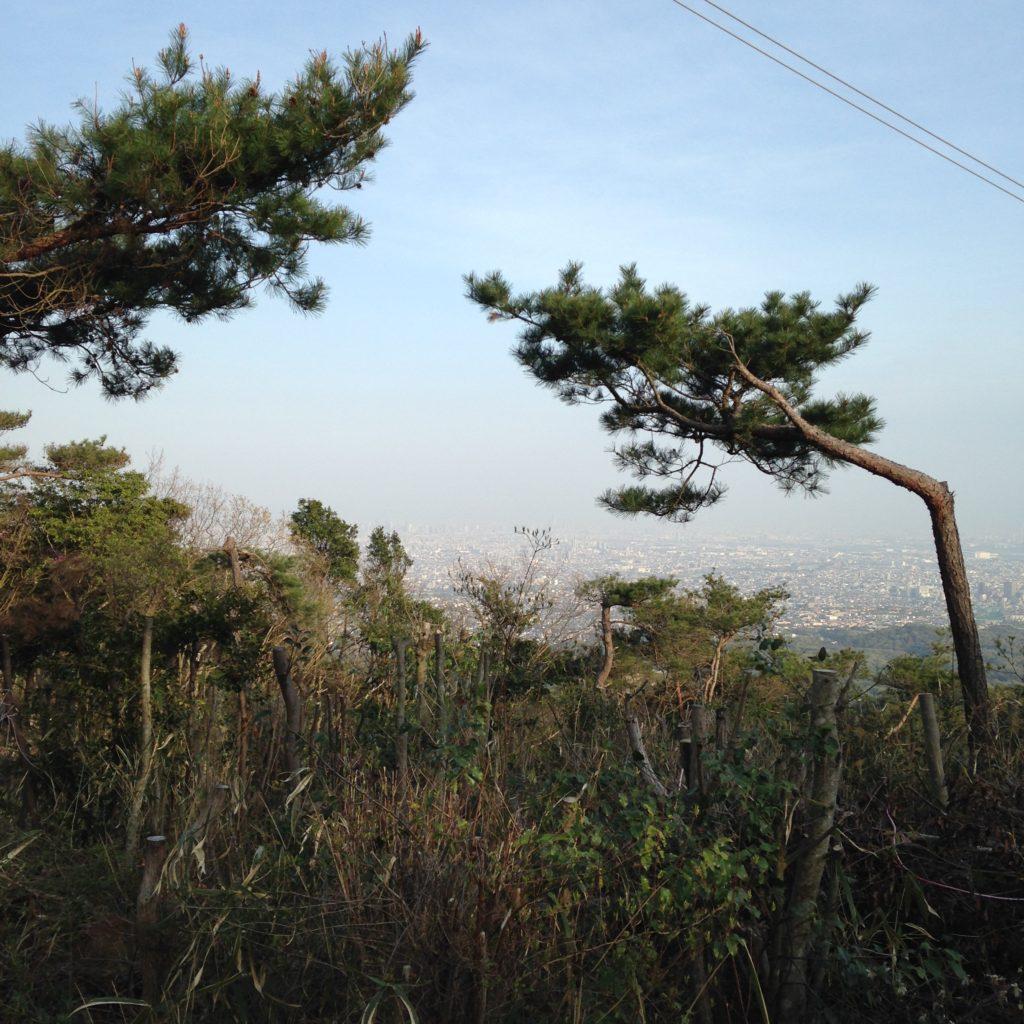 六甲山全山縦走